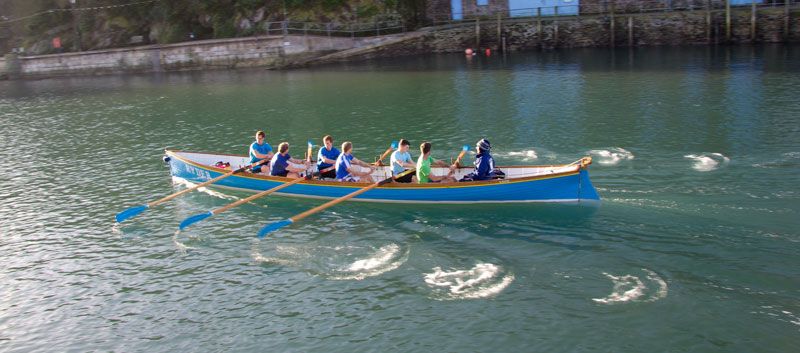 Gig's training in Looe Harbour